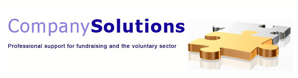 company solutions - professional support for fundraising and the voluntary sector